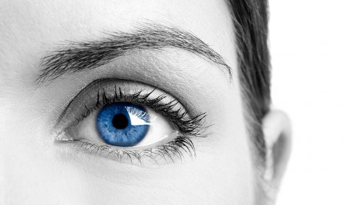 La-vista-el-sentido-mas-importante