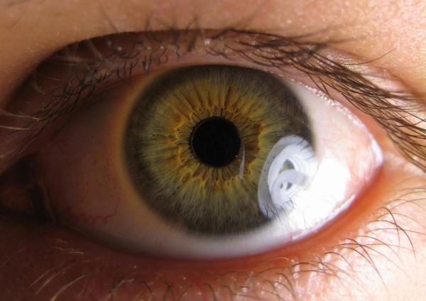 polucion-provocar-inflamaciones-oculares-acelerar-formacion-cataratas_1_585867