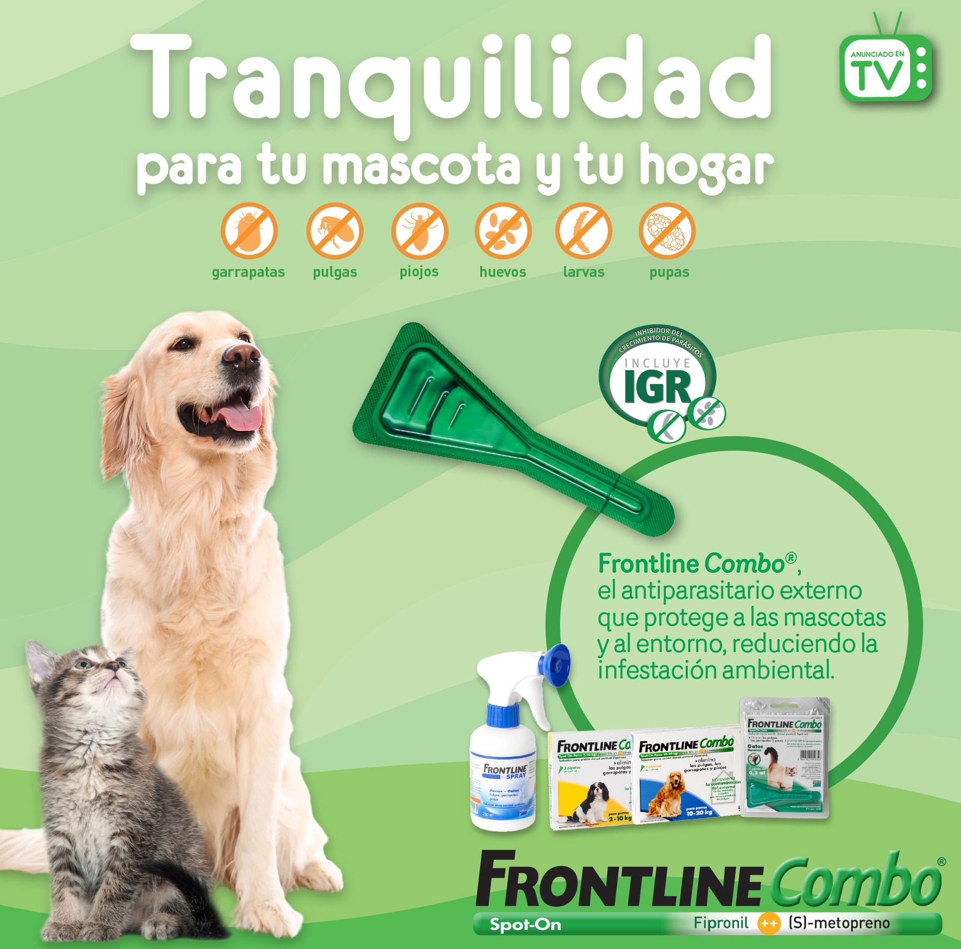 frontline_