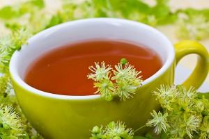 Las plantas medicinales ayudan a superar la vuelta a la rutina