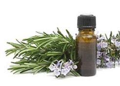 Las plantas medicinales ayudan a reducir el riesgo cardiovascular