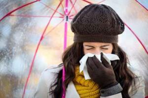 La equinácea refuerza el sistema inmunitario y previene las gripes y resfriados comunes