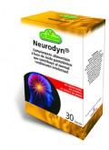 Neurodyn 2013