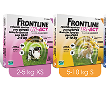 frontile