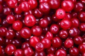 Cada vez más mujeres conocen las propiedades del arándano rojo contra la cistitis