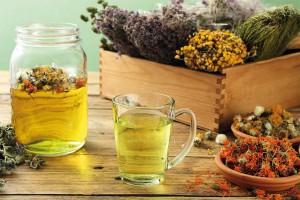 Plantas medicinales: digestivas y eficaces para el tránsito intestinal