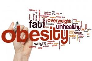 Intervenir en la macrobiota intestinal para combatir la obesidad