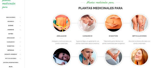 INFITO-lanza-una-web-de-informacion-practica-sobre-plantas-medicinales