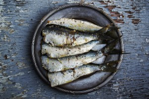 sardines-1489630_1280