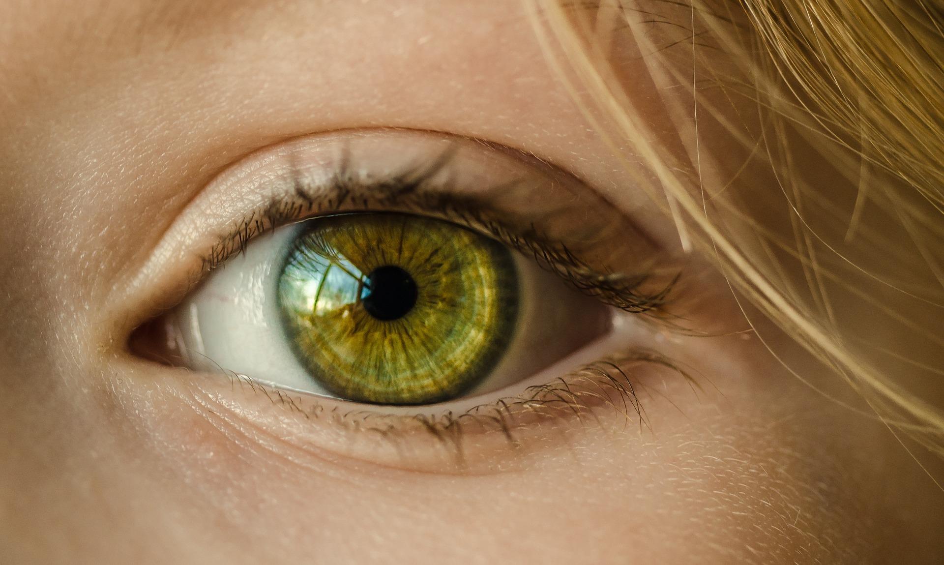 novartis-ojoseco
