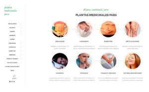 INFITO lanza una web de informacion practica sobre plantas medicinales