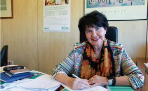 El rol de las Relaciones Institucionales RRII en la atencin sanitaria2