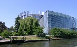 Parlamento Europeo la Gua de intervencin temprana en enfermedades musculoesquelticas