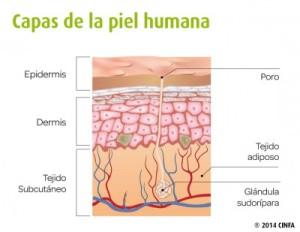 Consejos para cuidar la piel antes del verano