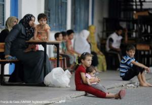 Farmamundi suministra medicamentos y paquetes nutricionales de emergencia a la población de Gaza