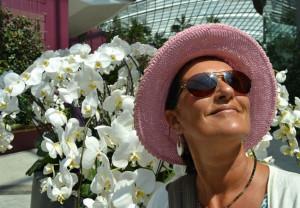 menopausia-tratamiento-hormonal