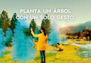 Aquilea planta 450 árboles, 10 por cada año de historia, para celebrar su 45 aniversario