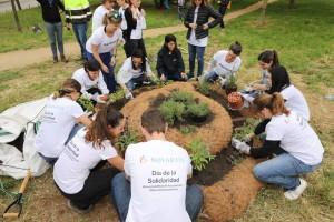 El Grupo Novartis en España celebra la 23ª edición de su Día de la Solidaridad