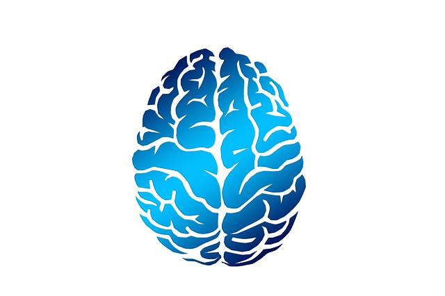 brain-2836401_640