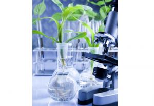 Arkopharma Laboratorios suprime el uso de excipientes químicos en sus nuevas formulaciones