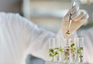 El Instituto Arkopharma y el CGCOF convocan la 2ª edición de los premios a las mejores tesis doctorales sobre productos naturales
